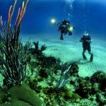 divers, scuba, reef